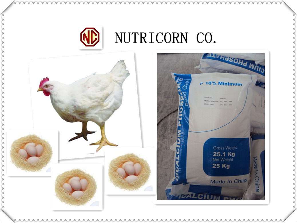 Nutricorn Feed Additive Dicalcium Phosphate/MDCP/Mcp for Chincken