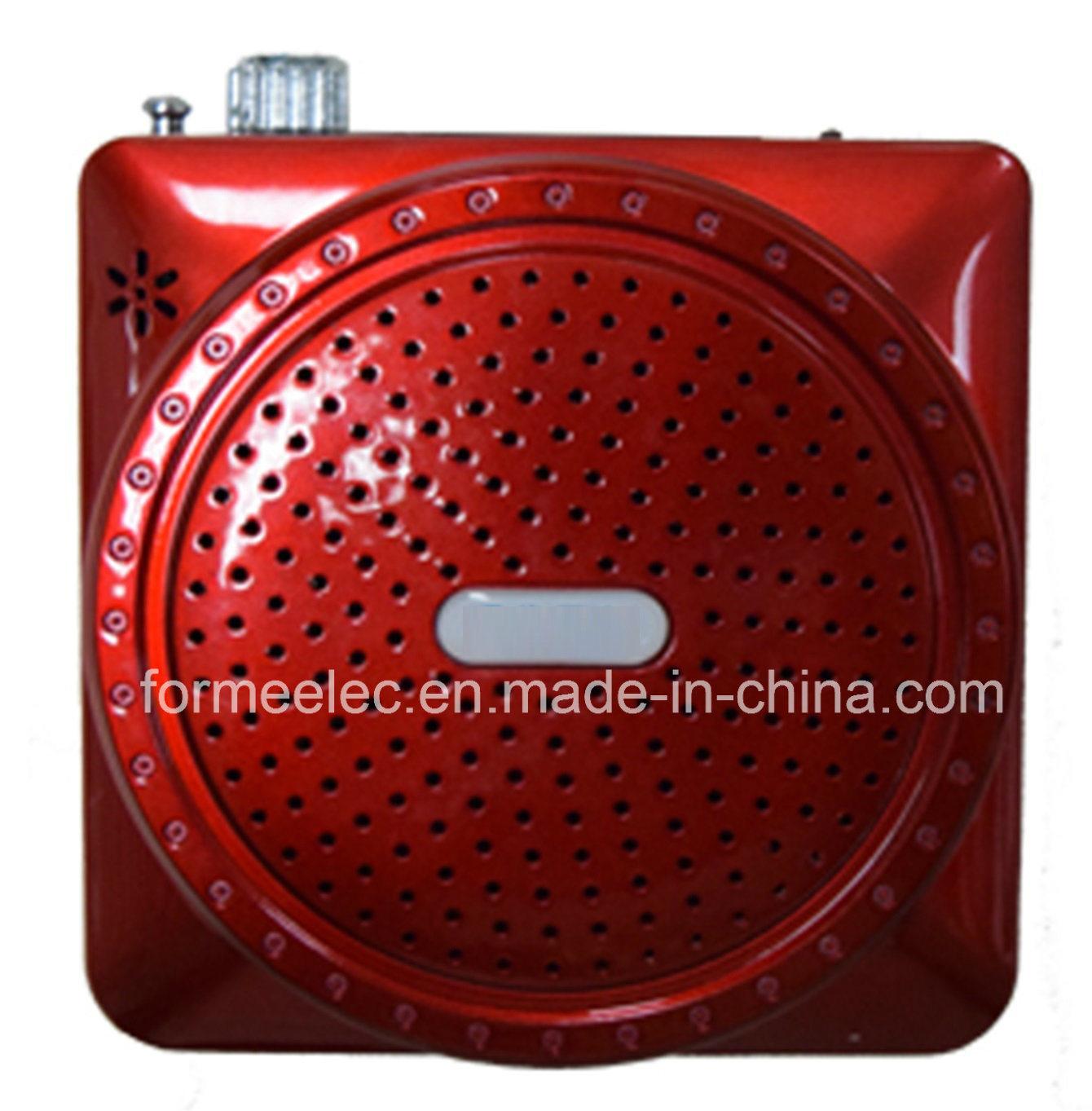 Portable Speaker FM Radio USB TF MP3 Player