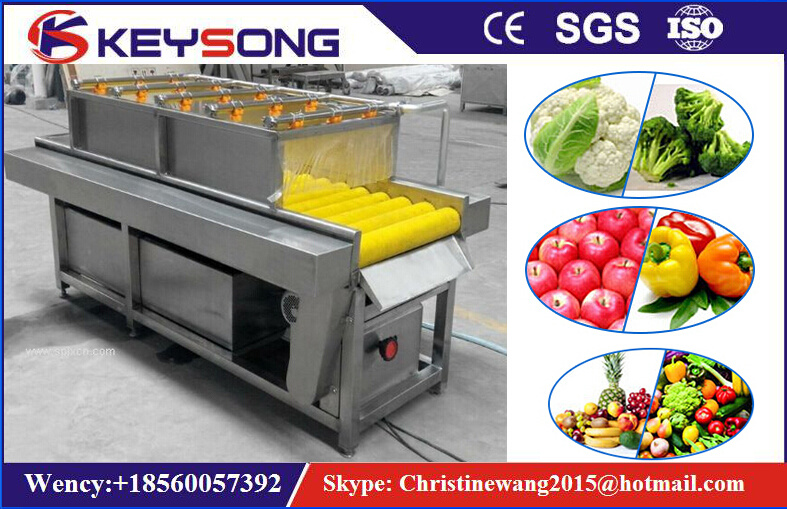 Industrial Vegetable Fruit Washing Machine