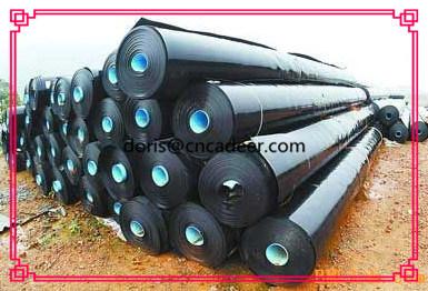 PE Waterproof Geomembrane