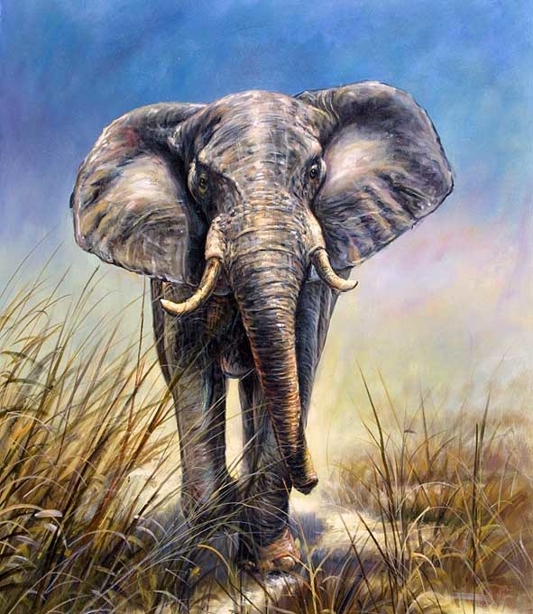 Animal art process for Animal oil paintings