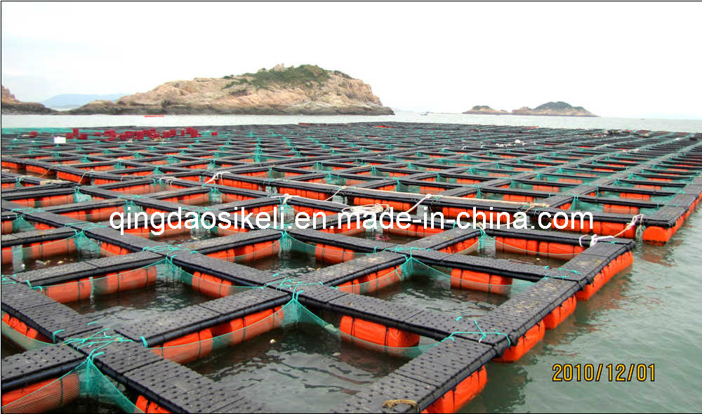 China Lake Aquaculture Net Cage Photos Pictures Made