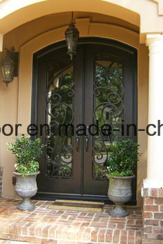 Modern Wrought Iron Decorative Exterior Door Gates