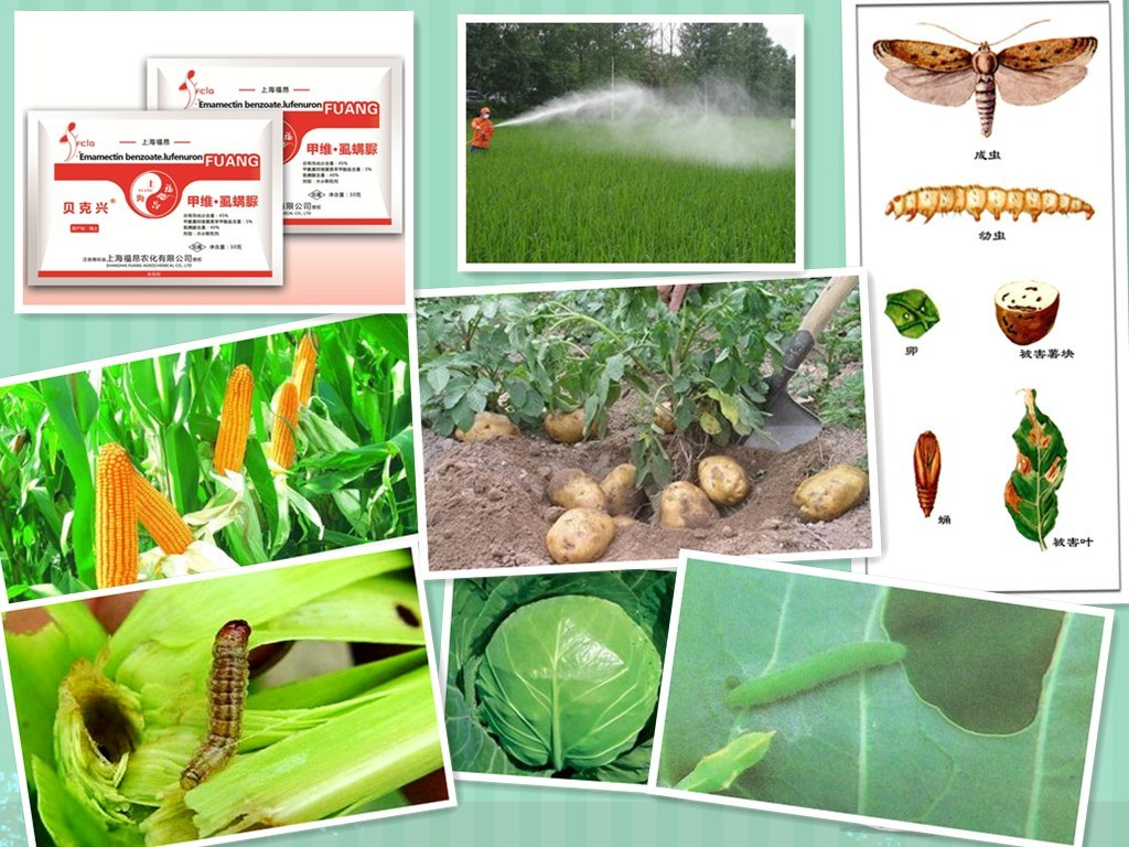 Agriculture Chemicals Combination Pesticide Emamectin Benzoate 10% + Lufenuron 40% Wdg