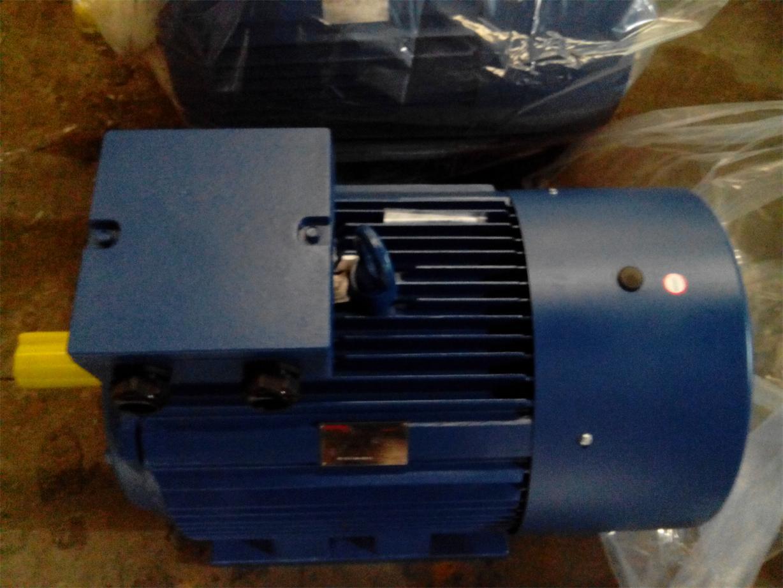 Ie1 Ie2 (CE) Y2 Three Phase Electric Motor (Y2-200L-4)