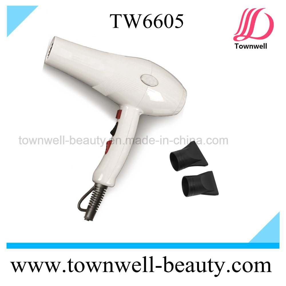 Big Blow 2 in 1 Hair Styling Tools Hair Dryer with AC Motor