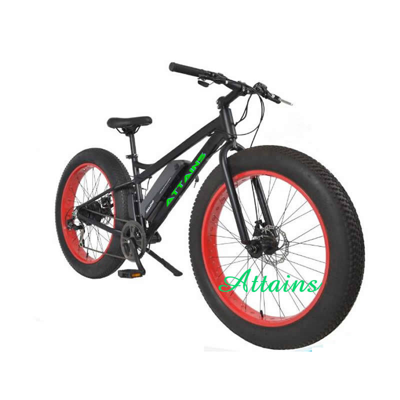 High Speen Fat Tire Snow Mountain Sand Beach E Bicycle