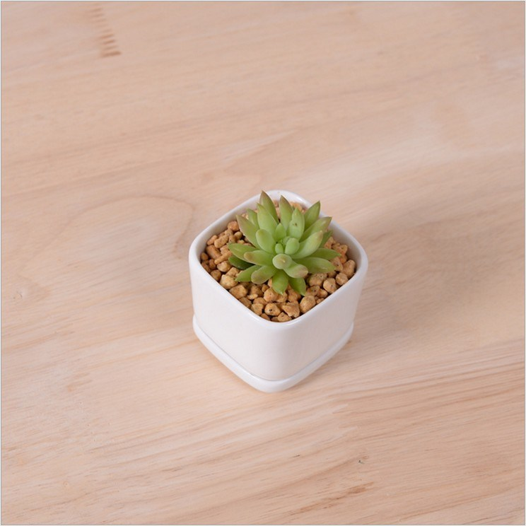 White Ceramic Flowerpot with Triangular Shaped Base Assorted Cold Dishes