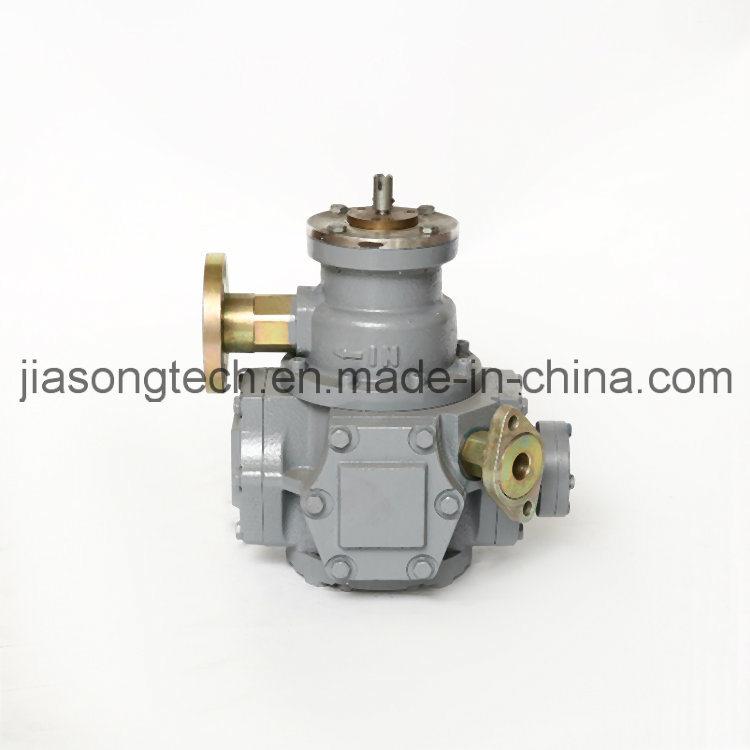 LPG Dispenser Copper Brass Solenoid Valve