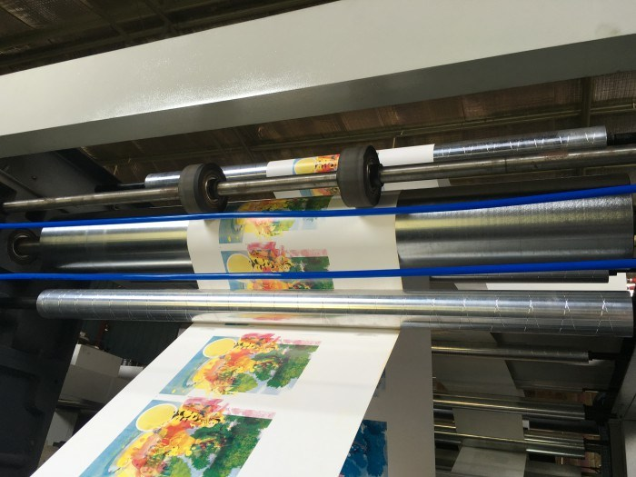 2 Colors Plastic Shopping Bag Roll Flexo Printing Machine (DC-YT21000)