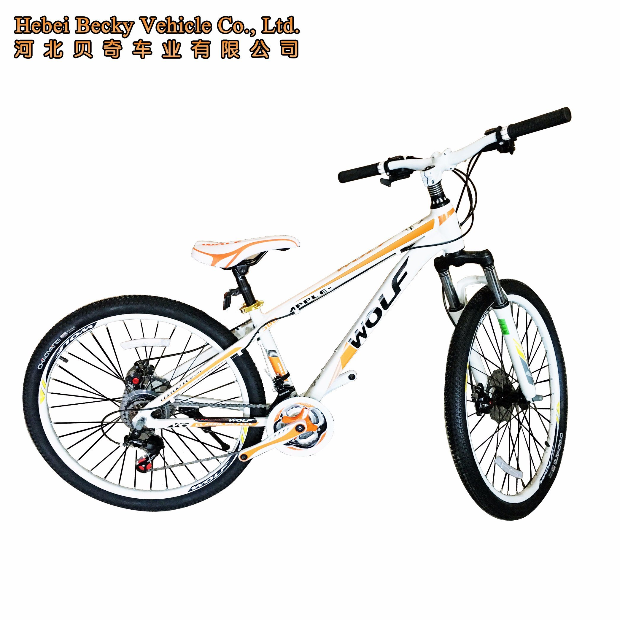 Aluminum Alloy Frame Colorful Mountain Bike (MTB-004)