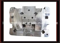 Plastic Car Lamp Mould/Mold (LY-839)