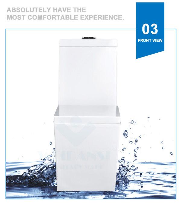 Weidansi Ceramic Wash Down S-Trap One Piece Toilet (WDS-T6101)