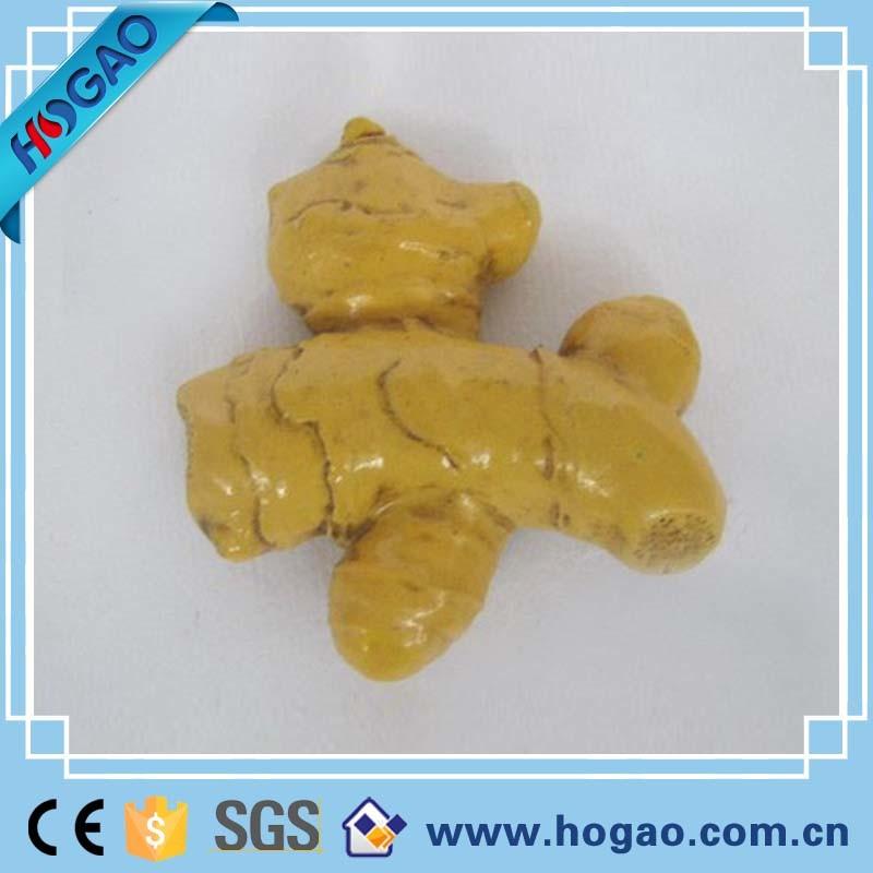 Ginger 3D Magnets Cooler Resin Vegetable Gift Craft