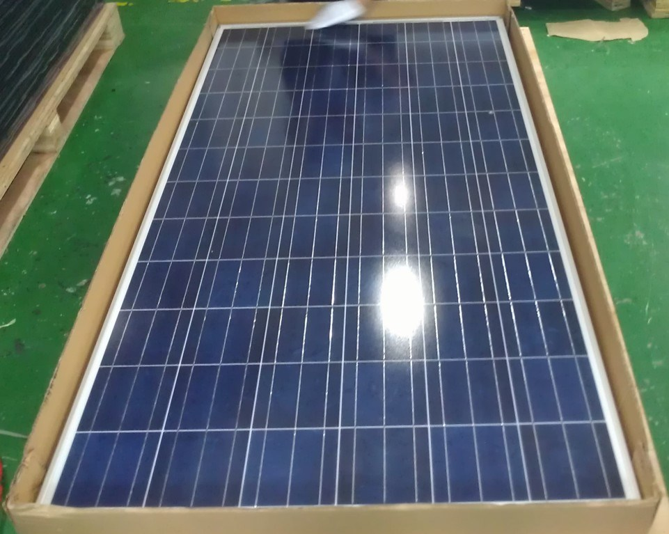 300W Poly Solar Panel for PV System, Top of Roof (SGP-300W)