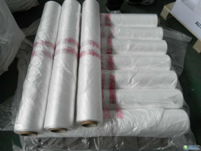 Factory Sell PE Disposable Masking Film with Paper Core for Car Repairing
