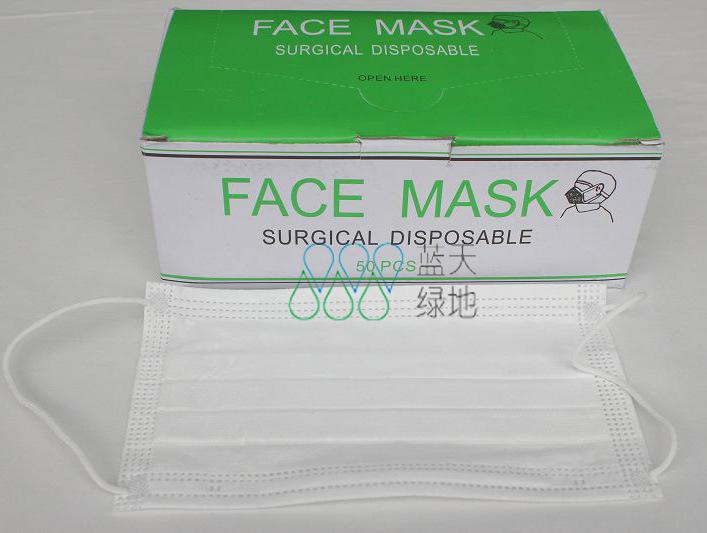 Cleanroom Es Face Mask (LTLD-411)