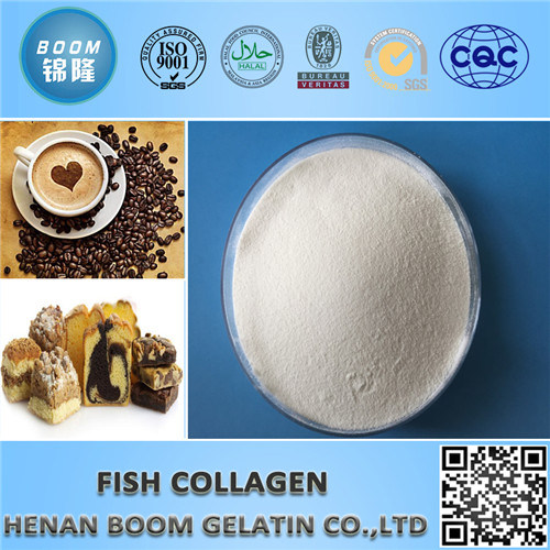 Food Grade Collagen as Food Nutritive Supplement