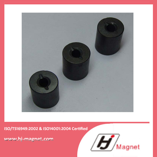 Long Experienced ISO/Ts16949 Certificated Permanent Ferrite Magnet