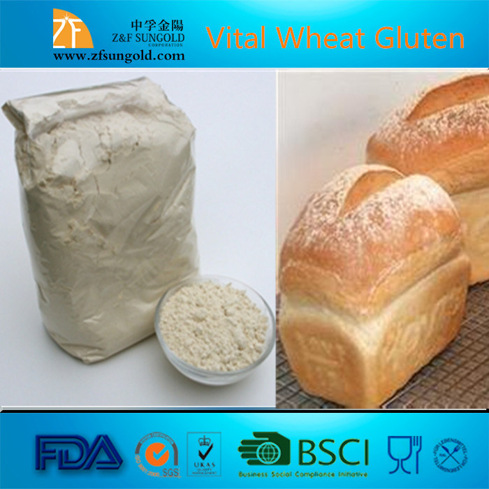 High Quality Food Grade Vital Wheat Gluten