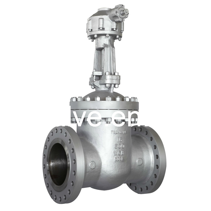 Cast Steel Flagne Wedge Gate Valve Class 150LB---1500LB