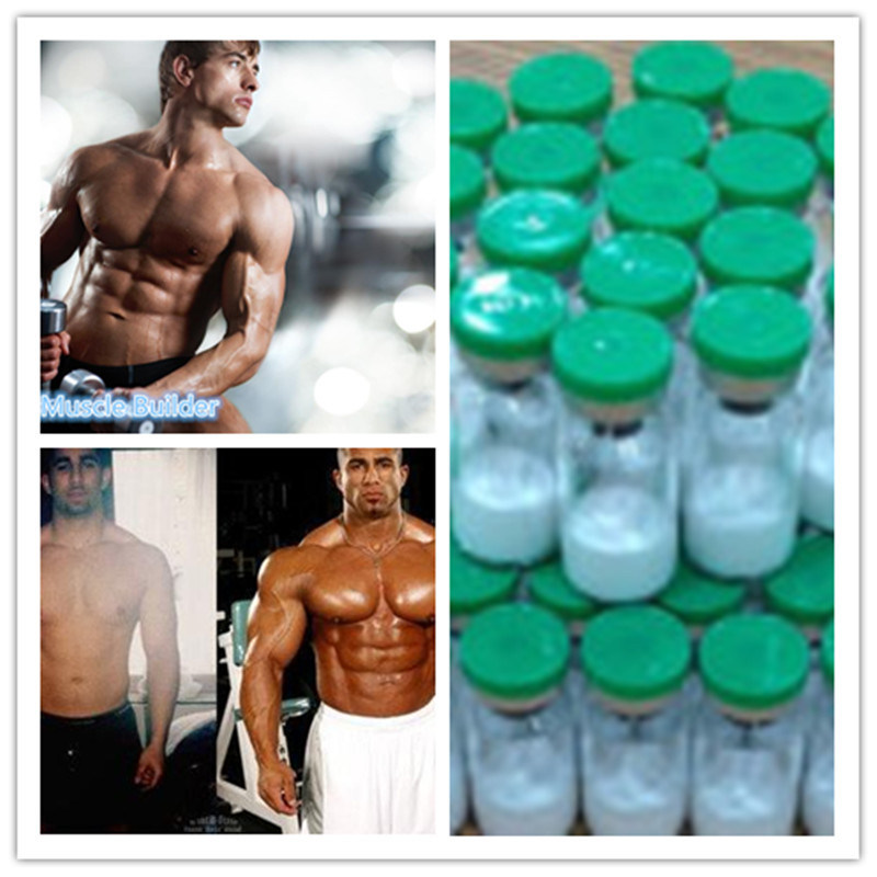 China High Quality Tb500/Tb-500 Peptide Powder to Building Muscle
