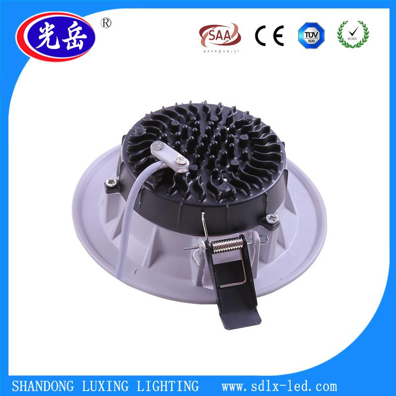 Golden 3W/5W/7W/9W/12W/15W LED Down/Ceiling/Bulb Light with Ce/RoHS