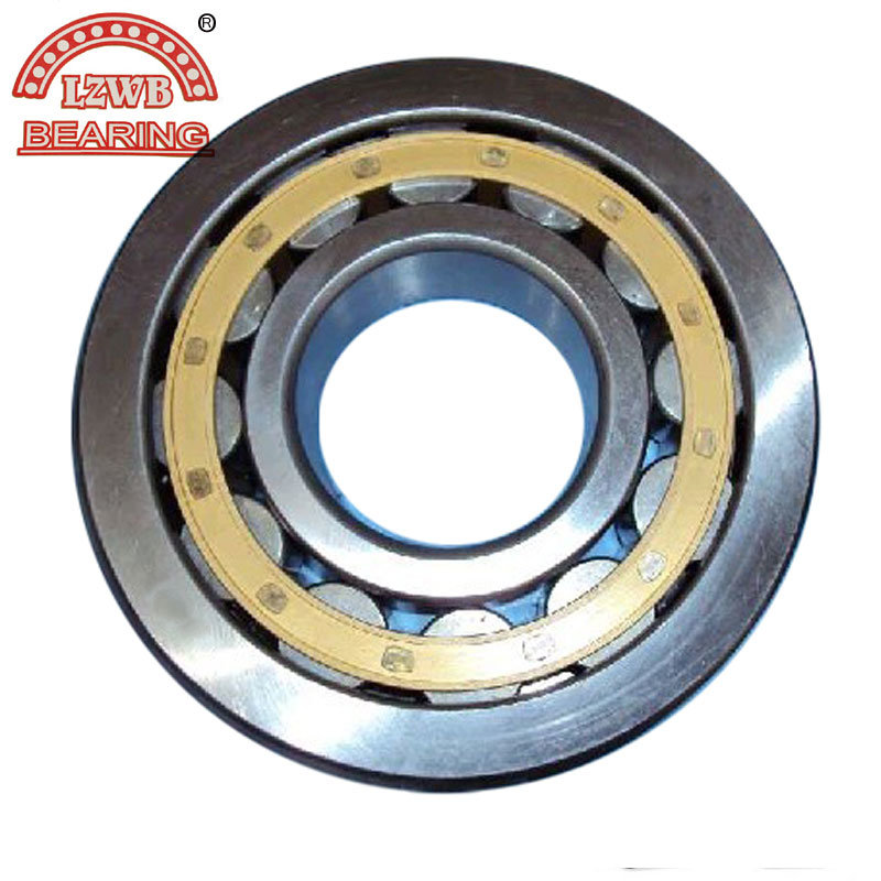 Cylindrical Roller Bearing with Brass Cage (NU3196M)