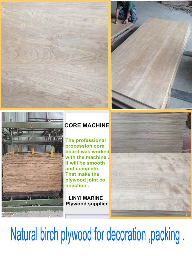 Natural Birch Face Plywood Poplar Core Plywood Furniture Grade Plywood