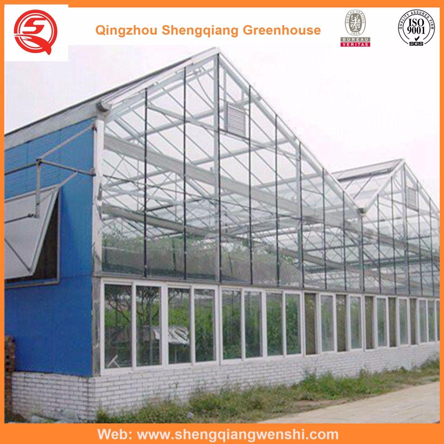 Vegetables/Garden/Flowers/Farm Multi Span Glass Green House