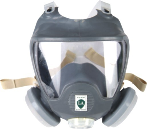 Full Face Dust Mask (9800B)