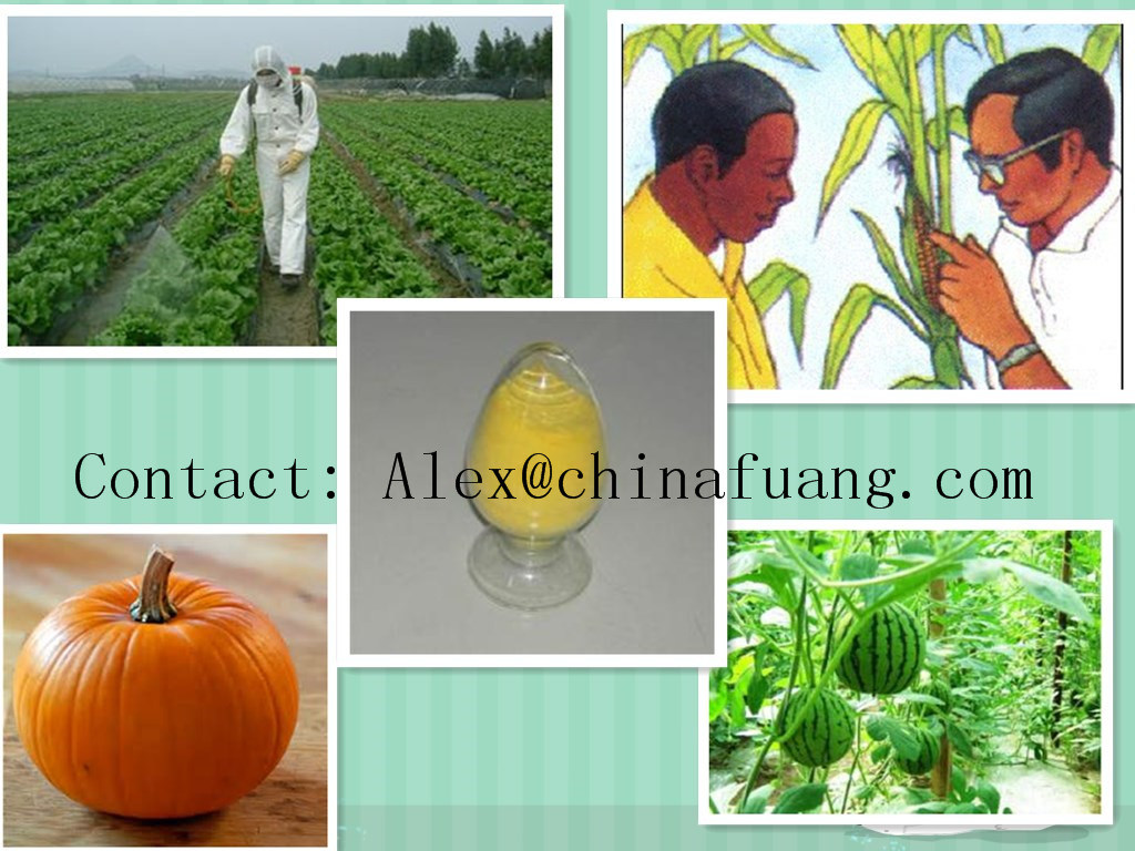 Manufacturer Pest Control, Insecticide, Veterinary Drug 95% Tc Nitenpyram