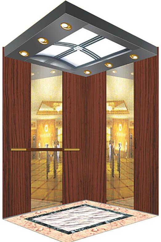 320-1600kg Machine Room Indoor Outdoor Passenger Elevator