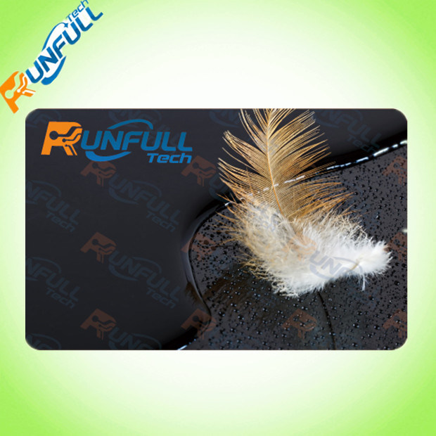 Hot Sale Discount PVC Gift Card with Magnetic Stripe/Film Lamination on Both Sides