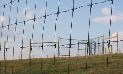 Anping Factory Galvanized Cheap Farm Fencing Price / Farm Field Fence