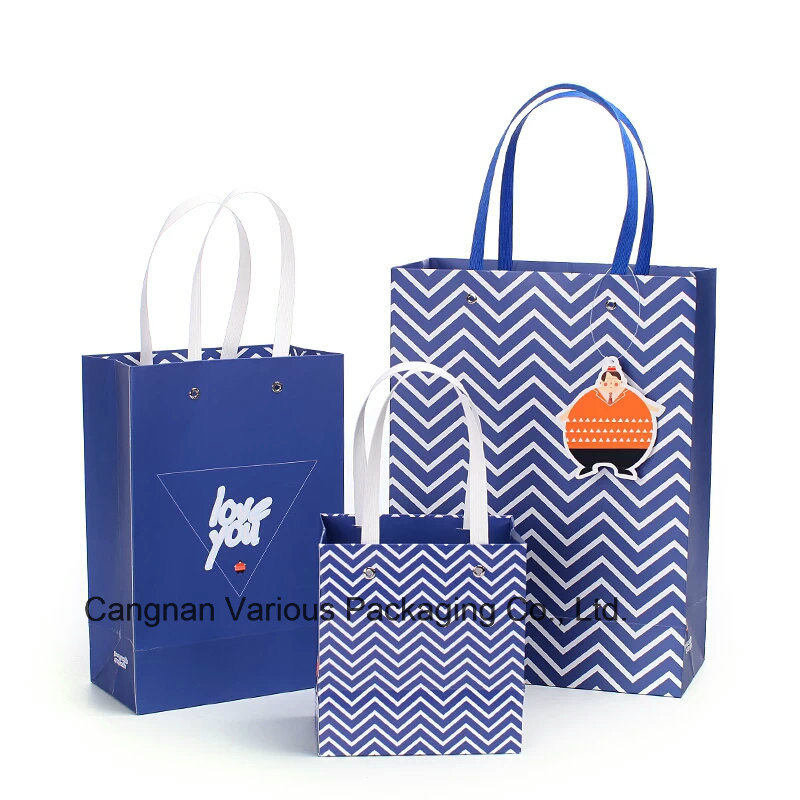 OEM Custom Printed Paper Bag/Shopping Bag /Packaging Bag/Carrier Bag with Handle (BG3002)