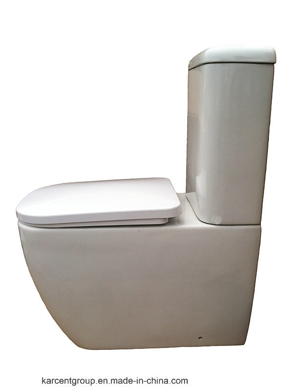 Two Piece Ceramic Toilet Washdown Toilet Water Closet Wc 10100