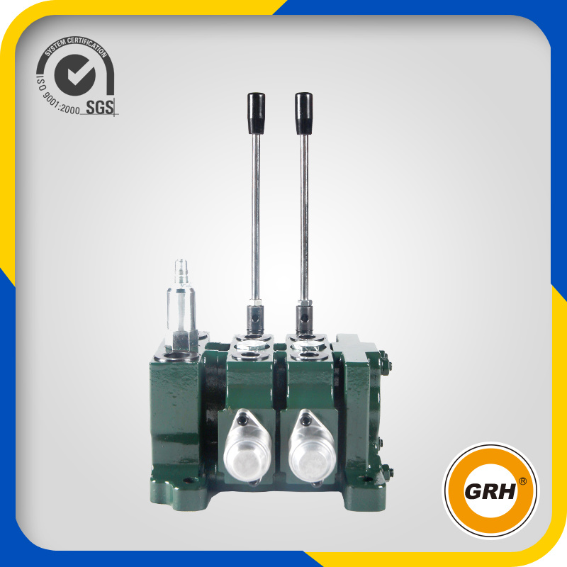 Hydraulic 50L/Min 2 Sections Sectional Valve for Hydraulic Valve