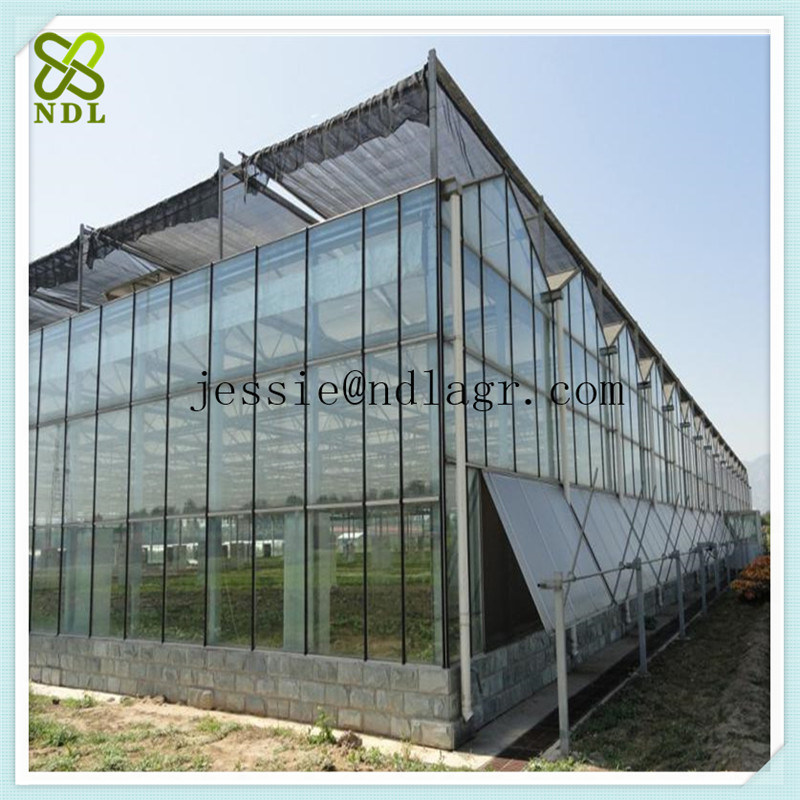 Gutter Connect Multi-Span Glass Green House