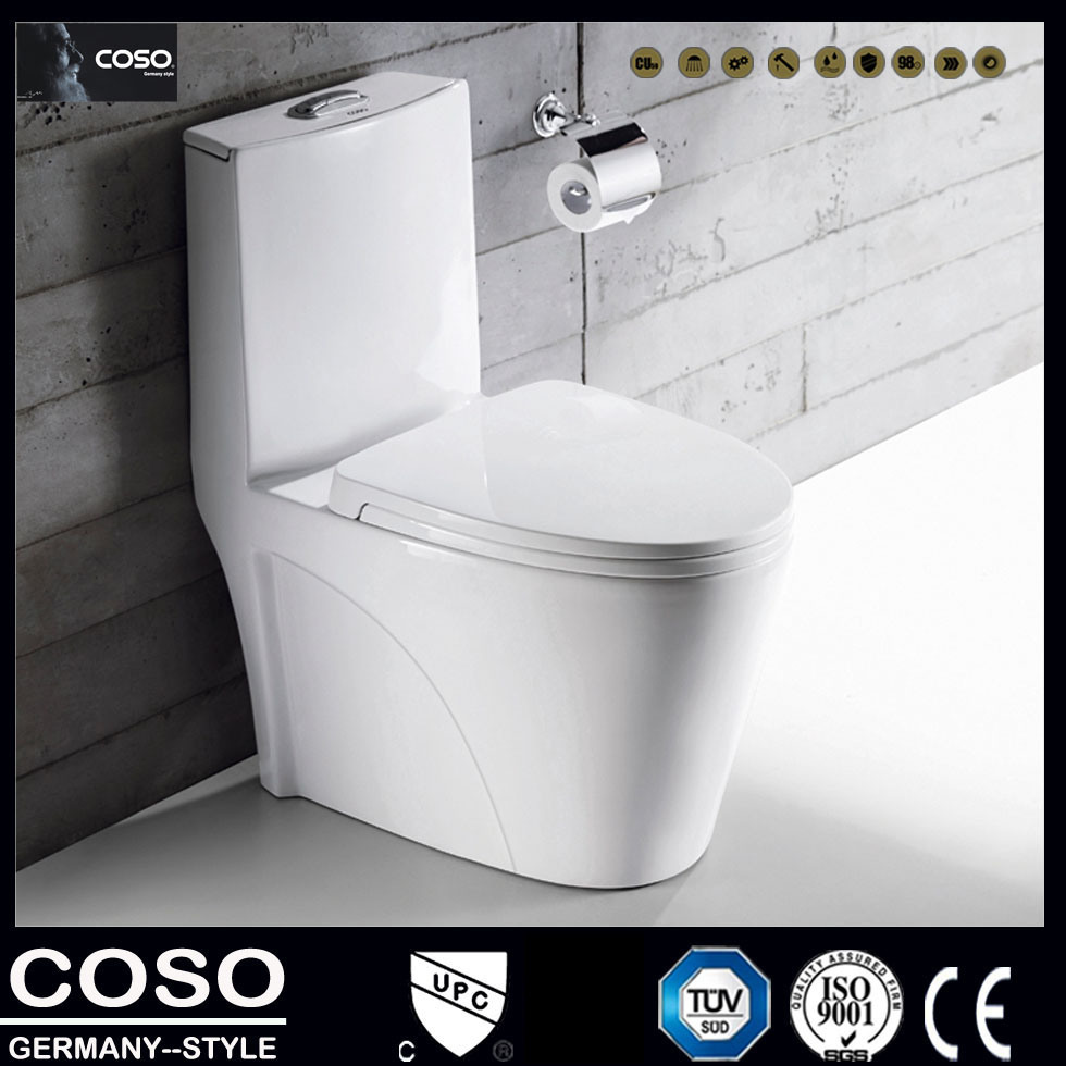 Washlet /Toilet with Double Hole Vortex Type Siphon