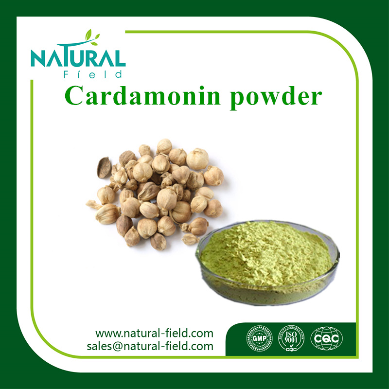 100% Natural Plant Extract Cardamom Extract Cardamonin 98%