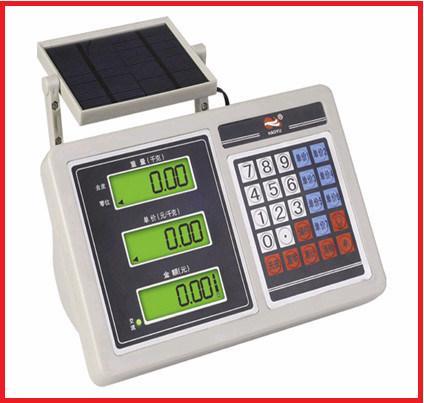 Energy Saving Plarform Digital Weighing Scale
