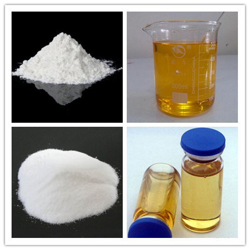 Raw Testosterone Enanthate Powder for Man Primoteston Depot
