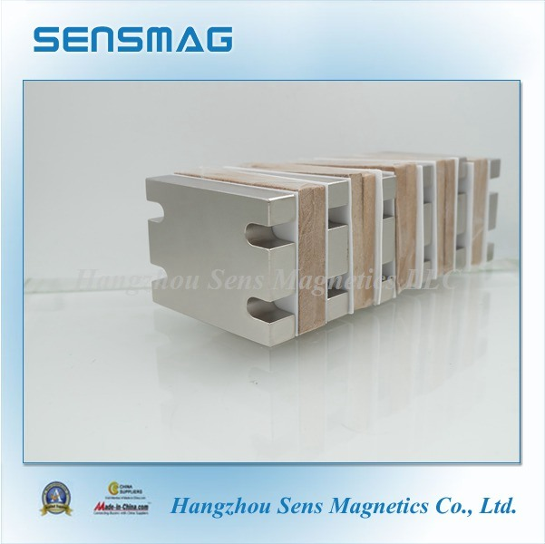 Customized Special Permanent NdFeB Block Magnet with RoHS for Motor