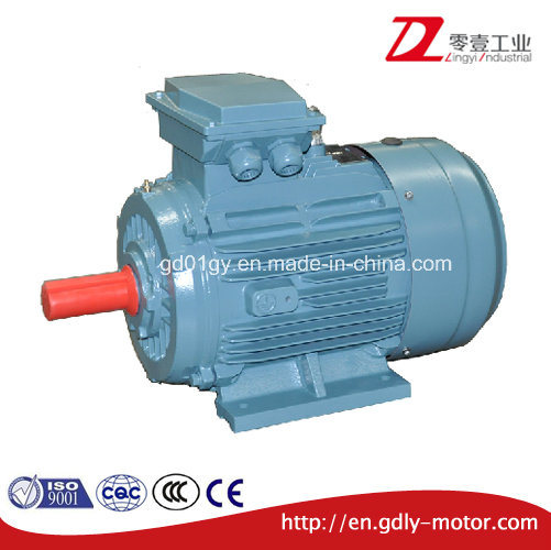 CE Approved IEC Standard 3 Phase Asynchronous Electric Motor