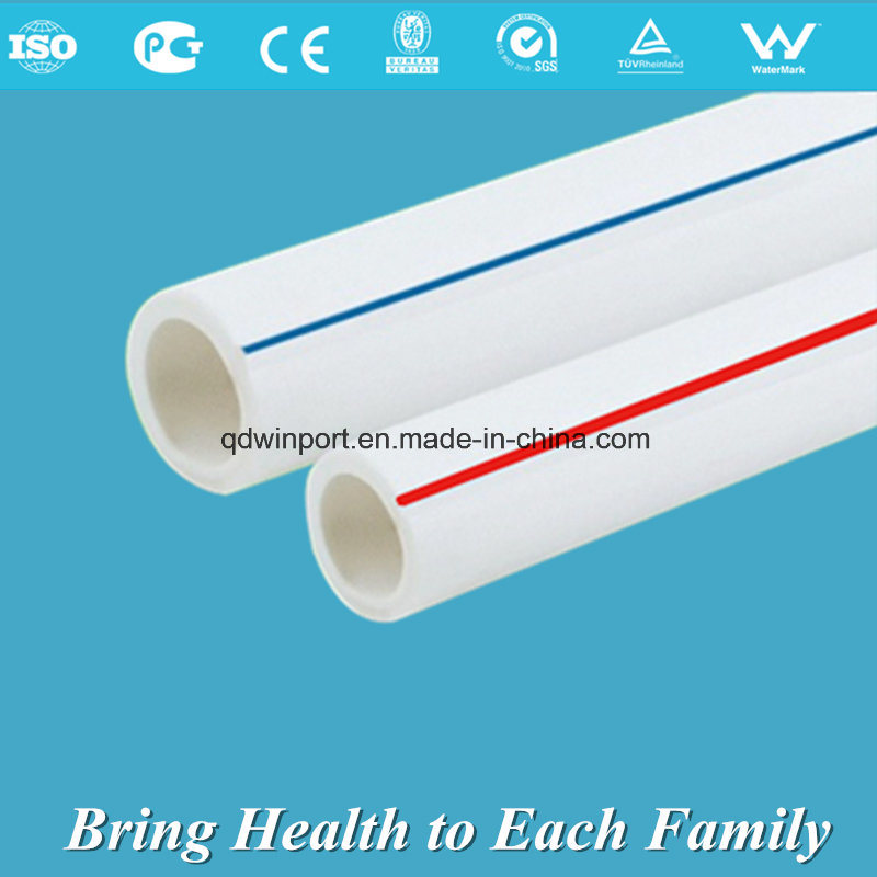 PPR Pipe for Hot and Cold Water Supply