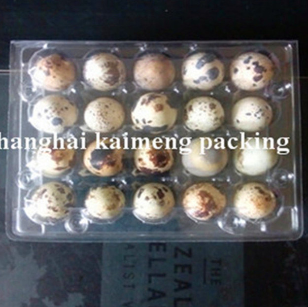 6/8/9/12/15/20 Holes Plastic Egg Box with Quail Egg Trays