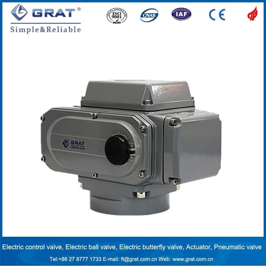 Electric Actuator for Valve Control System