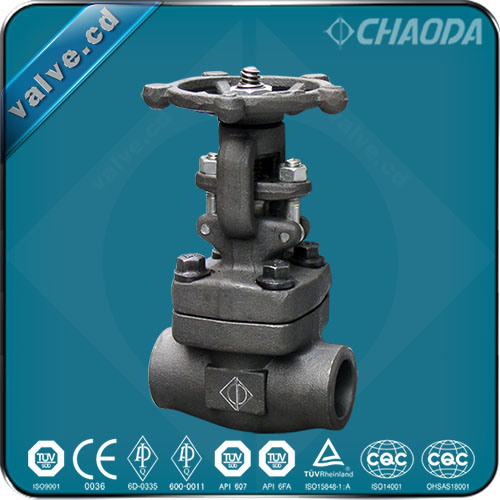 Chaoda Socket Welded/Sw Ends Forged Gate Valve