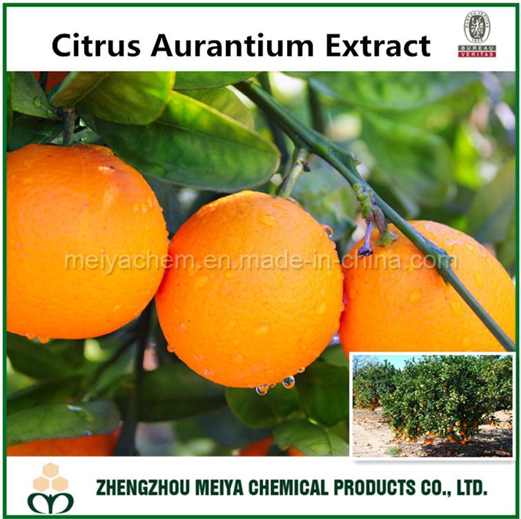 Hot Sale Weight Loss Powder Citrus Aurantium Extract Synephrine/ Hesperidin/ Diosmin